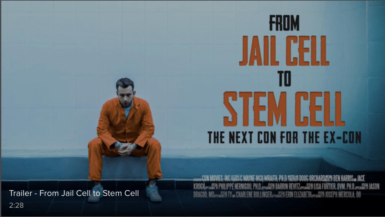 New Stem Cell Documentary!